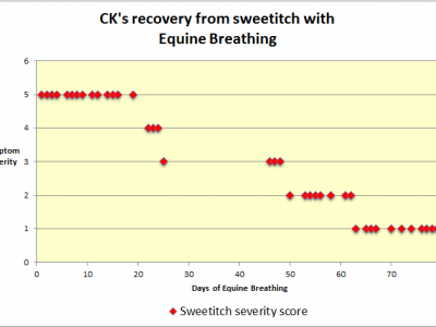 Equine Breathing sweetitch trial CK's results chart