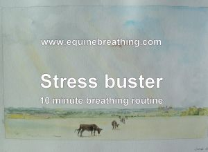 Stress buster breathing sequence